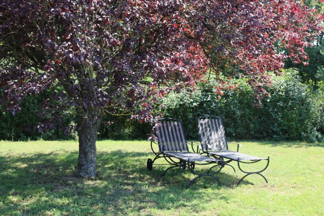 Ruhe genießen im weitläufigen Garten